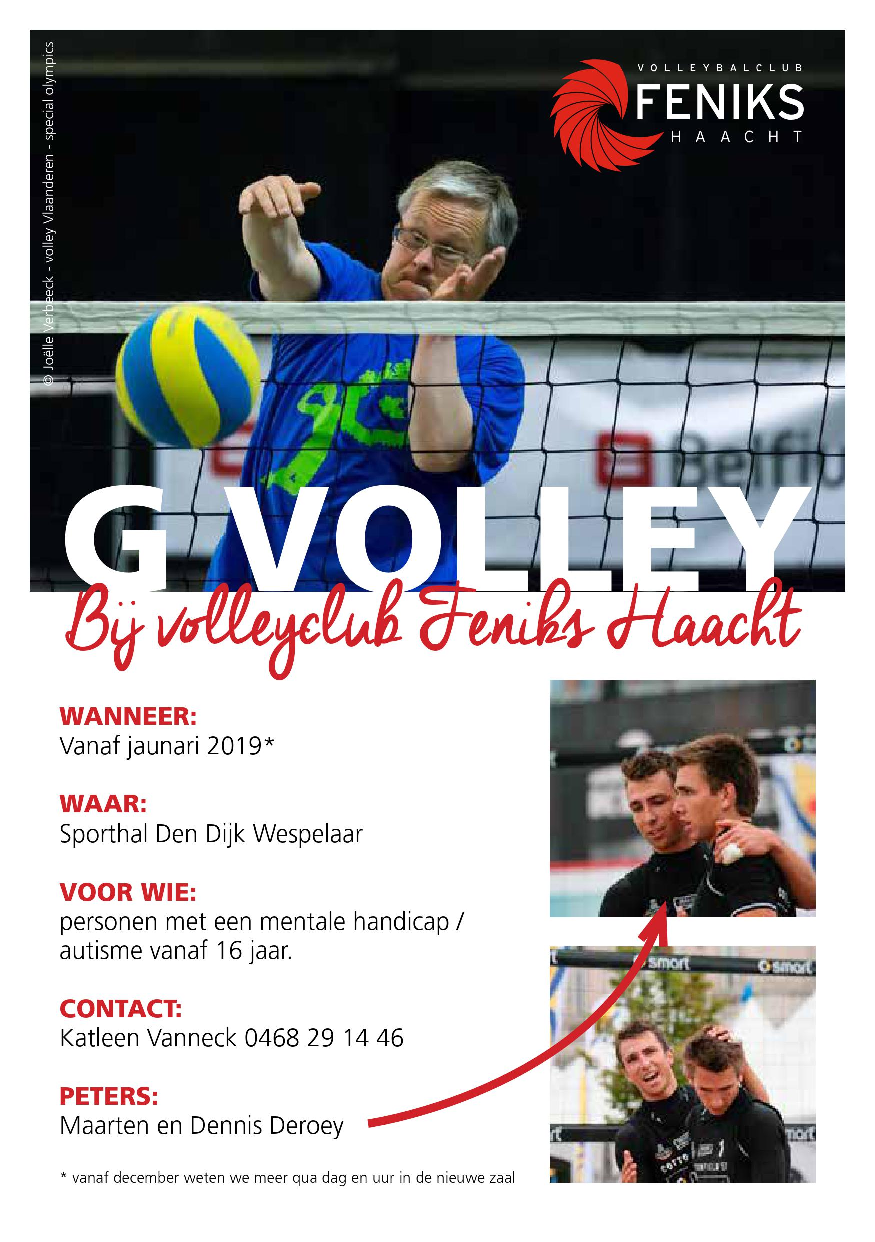 Flyer Gvolley